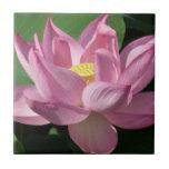 Pink Lotus Flower IV Ceramic Tile