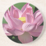 Pink Lotus Flower IV Coaster