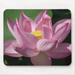 Pink Lotus Flower IV Mouse Pad