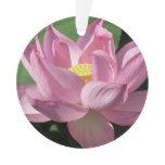 Pink Lotus Flower IV Ornament