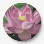 Pink Lotus Flower IV Paper Plate