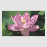 Pink Lotus Flower IV Rectangular Sticker