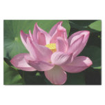 Pink Lotus Flower IV Tissue Paper