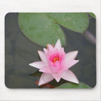 Pink Lotus Flower Mousepads