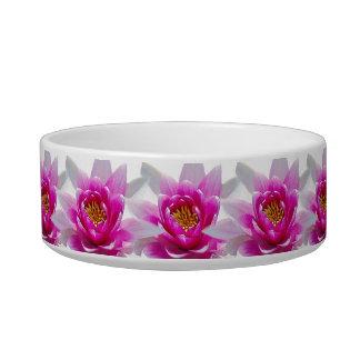 Pink lotus flower cat food bowl