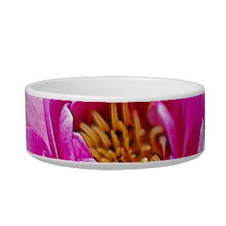 Pink lotus flower cat bowls