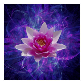 Pink lotus flower poster