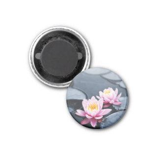 Pink lotus flowers 1 inch round magnet