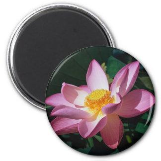 Pink Lotus Magnet