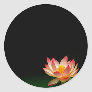 Pink lotus sticker, personalize it classic round sticker