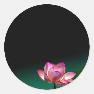 Pink lotus stickers