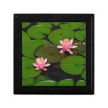 Pink lotus water lily flower  garden, gift box