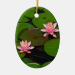 Pink lotus water lily flower  garden, christmas ornament