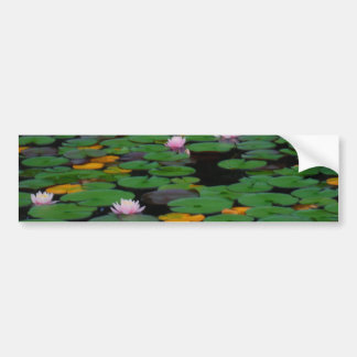 Pink lotus water lily flower pond bumper sticker