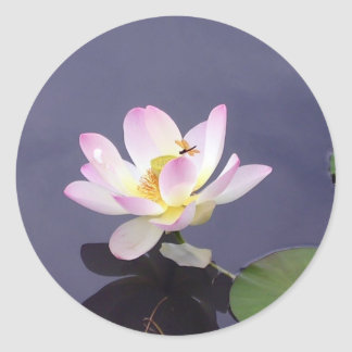 Pink Lotus with Dragon Fly Classic Round Sticker