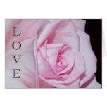 Pink Love Rose Card