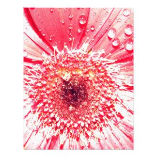 Pink Macro Gerbera Flower Custom Letterhead