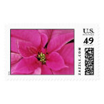 Pink Madness Postage