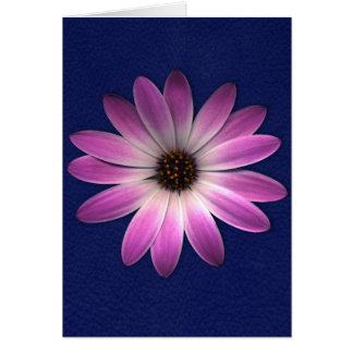 Pink Magenta Daisy on Royal Blue leather Print Greeting Card