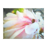 Pink Magnolia Acrylic Pastel Wrapped Canvas Canvas Print