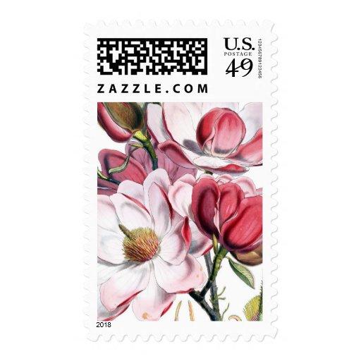 Pink Magnolia Flowers Stamp