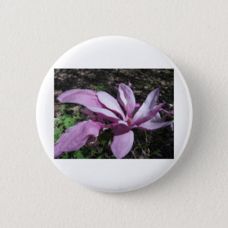 Pink Magnolia In Bloom Button