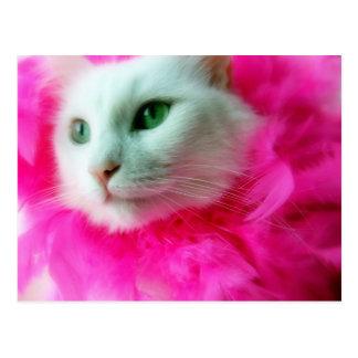 Pink Mane Postcard