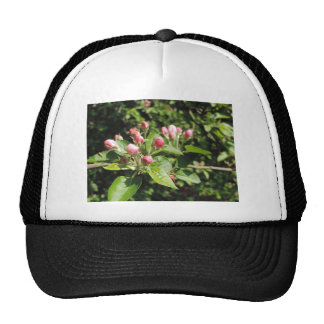 pink maple flowers product trucker hat
