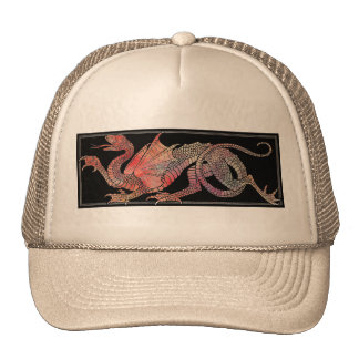 Pink Marble Dragon Hat