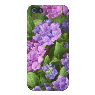 Pink, Mauve and Blue Hydrangeas Photograph Cover For iPhone SE/5/5s