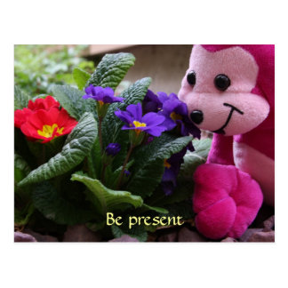 Pink Monkey Smelling Flowers Postcard