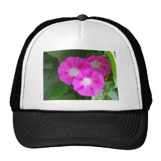 Pink Morning Glories Trio Trucker Hats