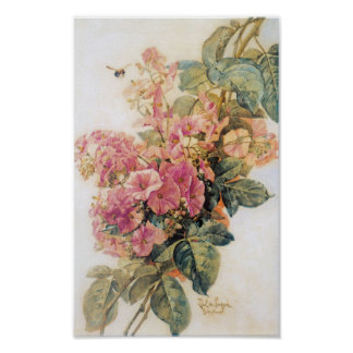Pink Morning Glories Vintage Poster