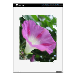 Pink Morning Glory Flower Skin For iPad 3