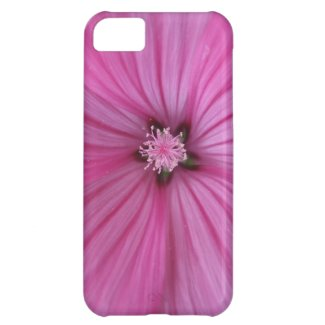 Pink Morning Glory ~ Macro Photography Case For iPhone 5C