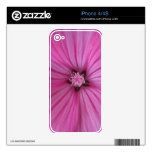 Pink Morning Glory ~ Macro Photography Decals For The iPhone 4