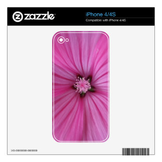 Pink Morning Glory ~ Macro Photography iPhone 4S Decal