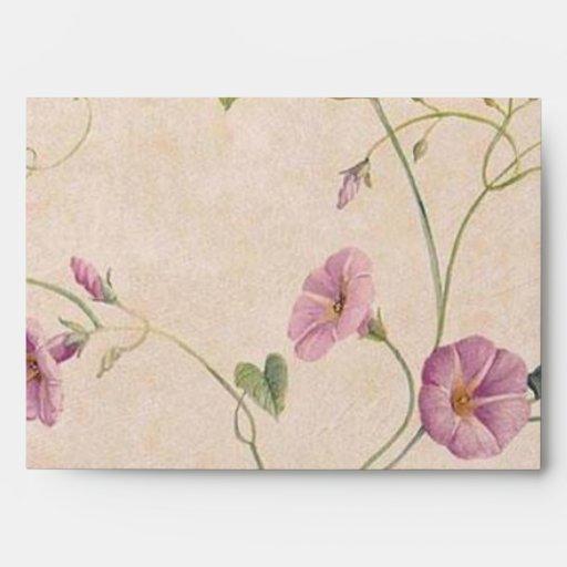 Pink Morning Glory Vine Envelopes
