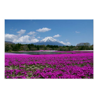 Pink moss and Mt. Fuji in the background Poster