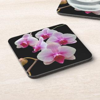 Pink Moth Orchids on Black - Phalaenopsis Drink Coaster