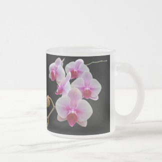 Pink Moth Orchids on Black - Phalaenopsis Frosted Glass Coffee Mug