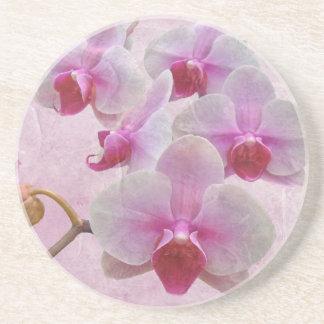 Pink Moth Orchids - Phalaenopsis Drink Coaster