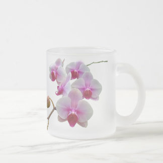 Pink Moth Orchids - Phalaenopsis Frosted Glass Coffee Mug