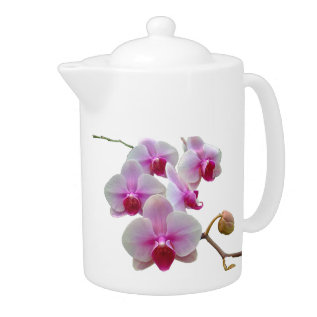 Pink Moth Orchids - Phalaenopsis Teapot at Zazzle