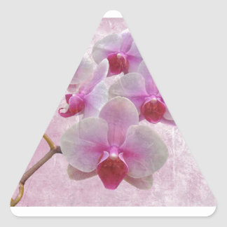 Pink Moth Orchids - Phalaenopsis Triangle Sticker