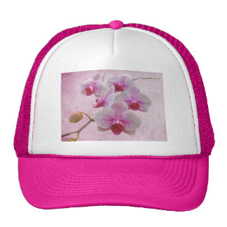 Pink Moth Orchids - Phalaenopsis Trucker Hat