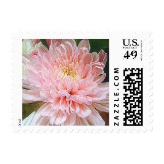 Pink Mum Postage Stamp