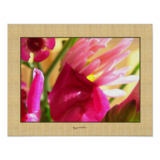 Pink Mum Snapdragon Close Up 2 Poster by gretchen