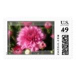 Pink Mum Stamps