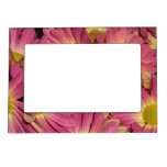 Pink Mums Magnet Picture Frame Magnetic Picture Frames
